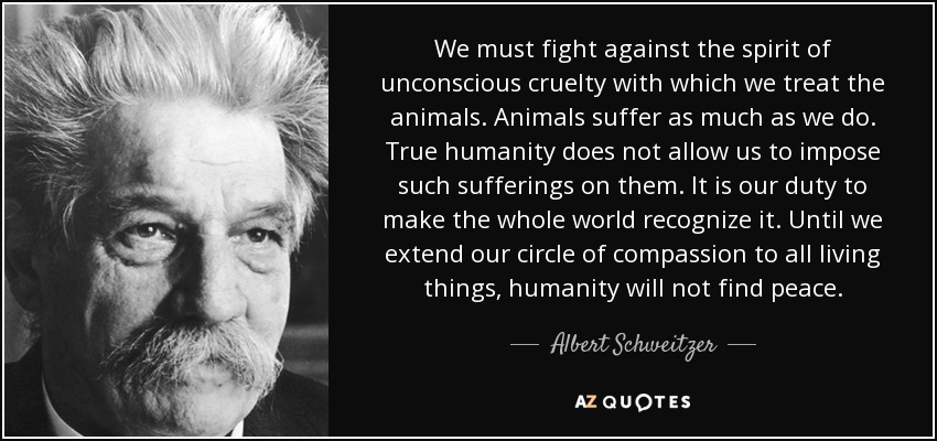 We must fight against the spirit of unconscious cruelty with which we treat the animals. Animals suffer as much as we do. True humanity does not allow us to impose such sufferings on them. It is our duty to make the whole world recognize it. Until we extend our circle of compassion to all living things, humanity will not find peace. - Albert Schweitzer
