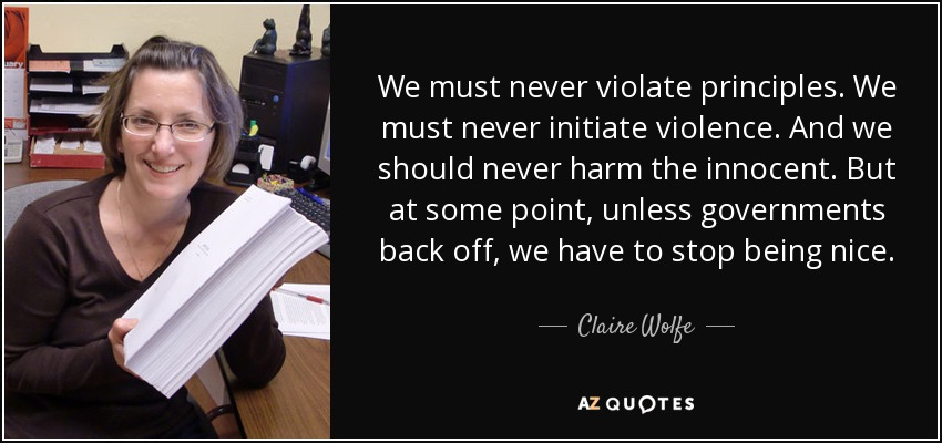 We must never violate principles. We must never initiate violence. And we should never harm the innocent. But at some point, unless governments back off, we have to stop being nice. - Claire Wolfe