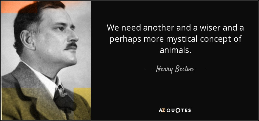 We need another and a wiser and a perhaps more mystical concept of animals. - Henry Beston