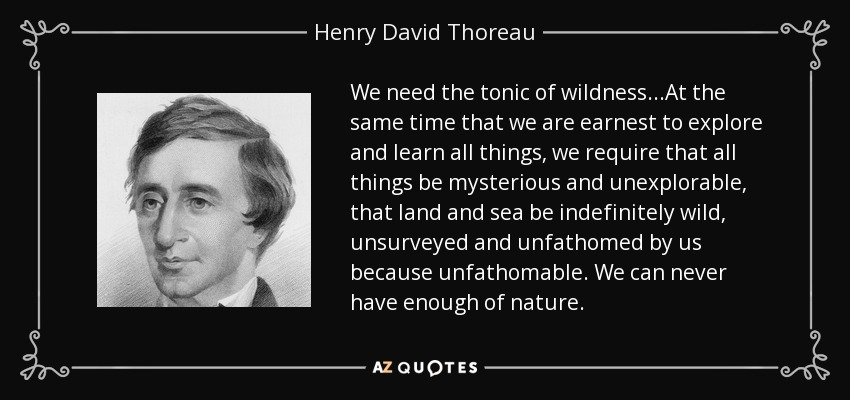 We need the tonic of wildness...At the same time that we are earnest to explore and learn all things, we require that all things be mysterious and unexplorable, that land and sea be indefinitely wild, unsurveyed and unfathomed by us because unfathomable. We can never have enough of nature. - Henry David Thoreau