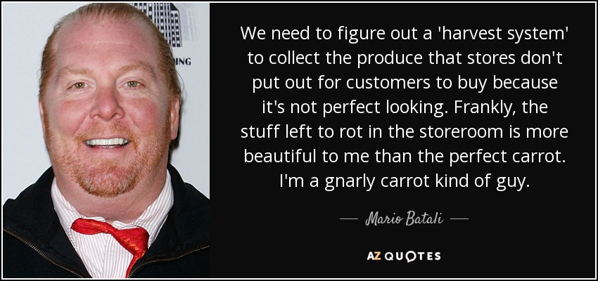 We need to figure out a 'harvest system' to collect the produce that stores don't put out for customers to buy because it's not perfect looking. Frankly, the stuff left to rot in the storeroom is more beautiful to me than the perfect carrot. I'm a gnarly carrot kind of guy. - Mario Batali