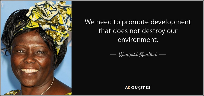 We need to promote development that does not destroy our environment. - Wangari Maathai