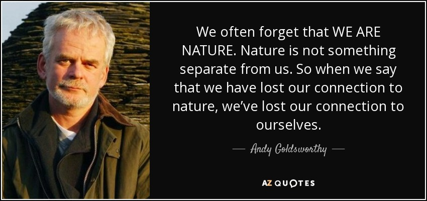 Top 25 Quotes By Andy Goldsworthy Of 108 A Z Quotes