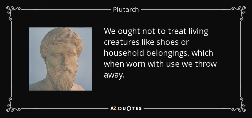 We ought not to treat living creatures like shoes or household belongings, which when worn with use we throw away. - Plutarch