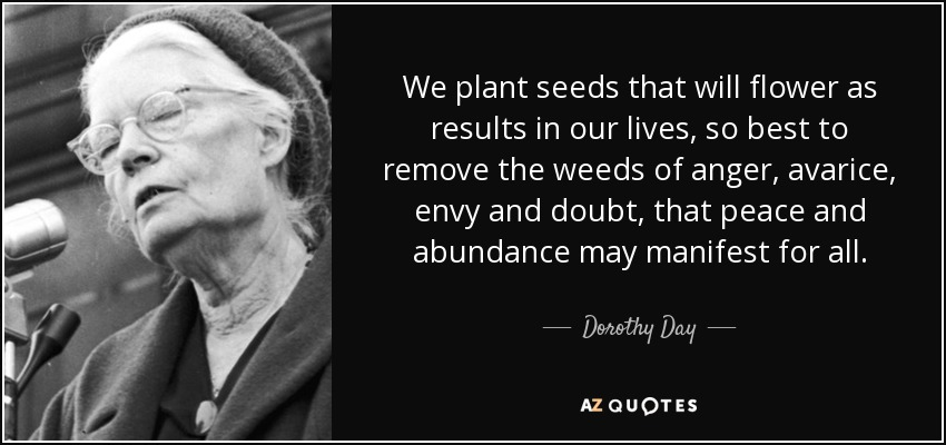 We plant seeds that will flower as results in our lives, so best to remove the weeds of anger, avarice, envy and doubt, that peace and abundance may manifest for all. - Dorothy Day