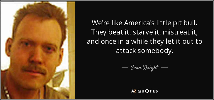 We're like America's little pit bull. They beat it, starve it, mistreat it, and once in a while they let it out to attack somebody. - Evan Wright