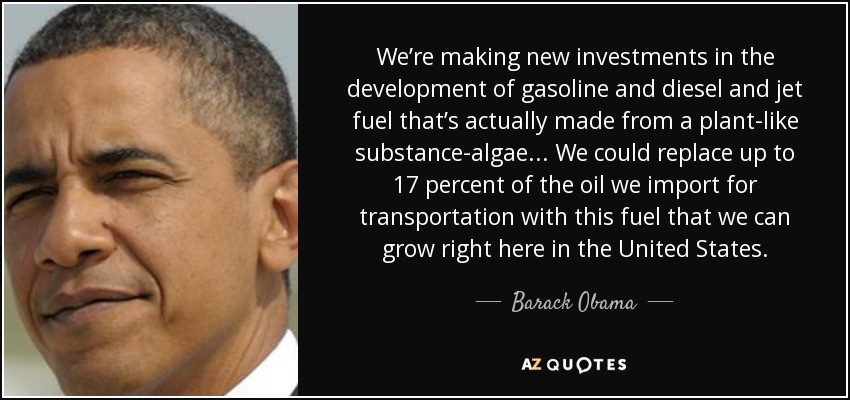 We're making new investments in the development of gasoline and diesel and jet fuel that's actually made from a plant-like substance-algae...we could replace up to 17 percent of the oil we import for transportation with this fuel that we can grow right here in America. - Barack Obama