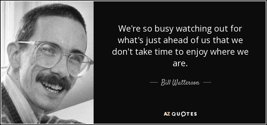 Bill Watterson Quote: We're So Busy Watching Out For What