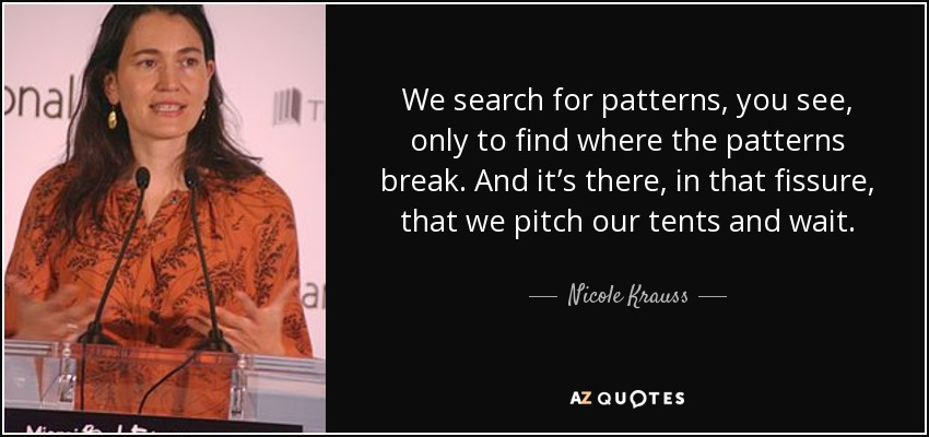 We search for patterns, you see, only to find where the patterns break. And it's there, in that fissure, that we pitch our tents and wait. - Nicole Krauss