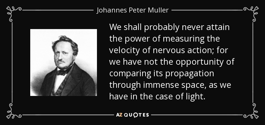 We shall probably never attain the power of measuring the velocity of nervous action; for we have not the opportunity of comparing its propagation through immense space, as we have in the case of light. - Johannes Peter Muller