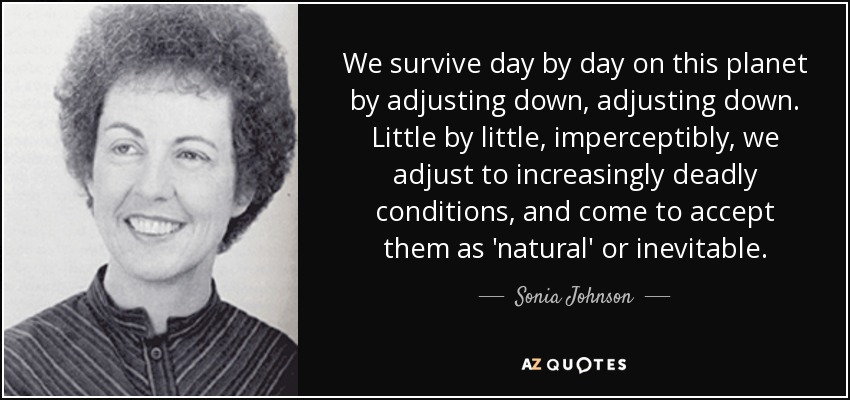 We survive day by day on this planet by adjusting down, adjusting down. Little by little, imperceptibly, we adjust to increasingly deadly conditions, and come to accept them as 'natural' or inevitable. - Sonia Johnson