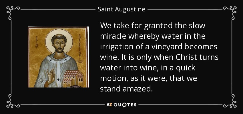 We take for granted the slow miracle whereby water in the irrigation of a vineyard becomes wine. It is only when Christ turns water into wine, in a quick motion, as it were, that we stand amazed. - Saint Augustine