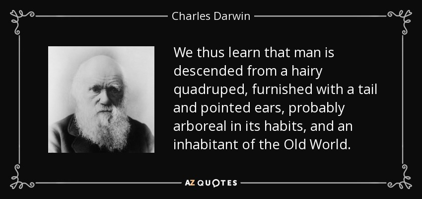 We thus learn that man is descended from a hairy quadruped, furnished with a tail and pointed ears, probably arboreal in its habits, and an inhabitant of the Old World. - Charles Darwin