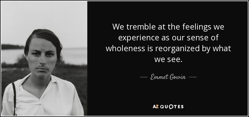 We tremble at the feelings we experience as our sense of wholeness is reorganized by what we see. - Emmet Gowin