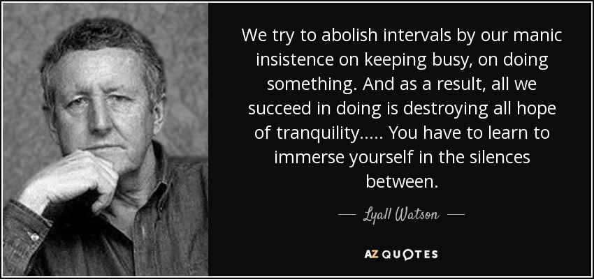 We try to abolish intervals by our manic insistence on keeping busy, on doing something. And as a result, all we succeed in doing is destroying all hope of tranquility. ... . You have to learn to immerse yourself in the silences between. - Lyall Watson
