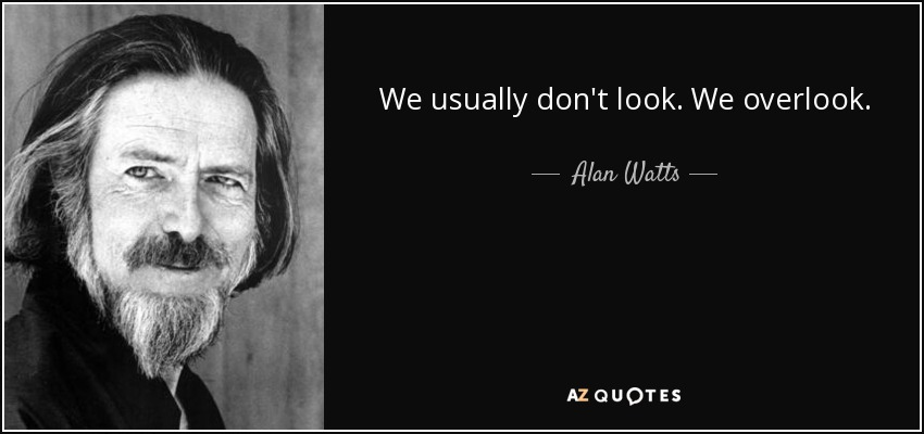 We usually don't look. We overlook. - Alan Watts