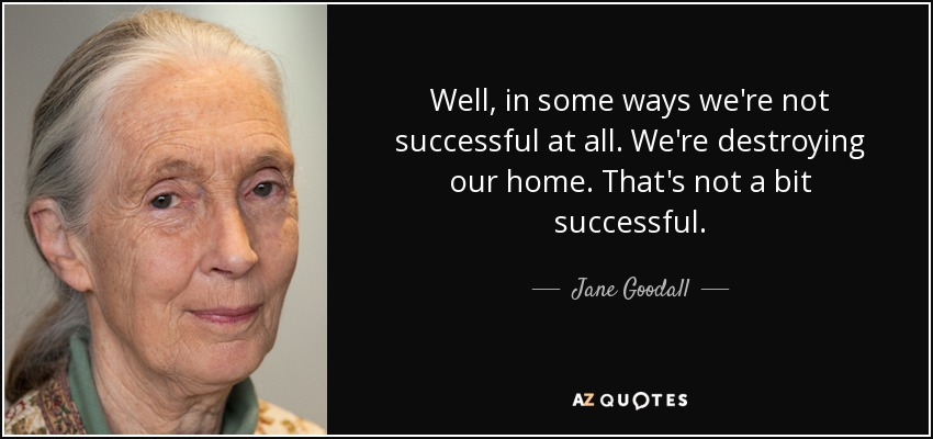 Well, in some ways we're not successful at all. We're destroying our home. That's not a bit successful. - Jane Goodall