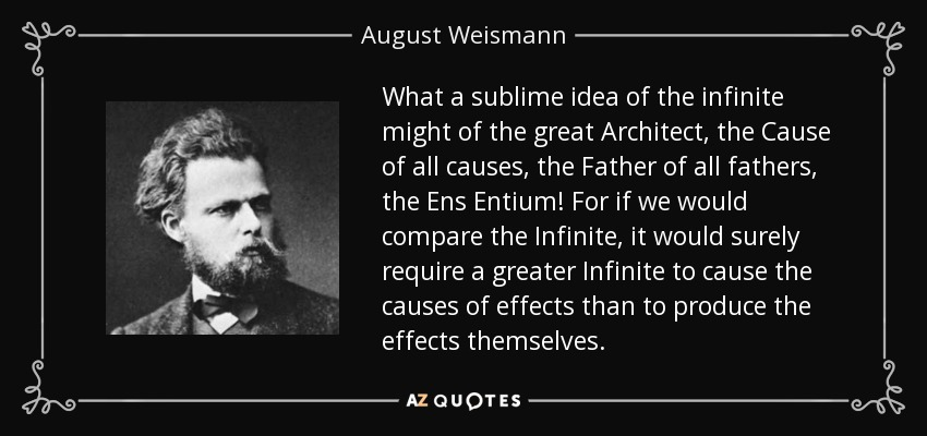 What a sublime idea of the infinite might of the great Architect, the Cause of all causes, the Father of all fathers, the Ens Entium! For if we would compare the Infinite, it would surely require a greater Infinite to cause the causes of effects than to produce the effects themselves. - August Weismann