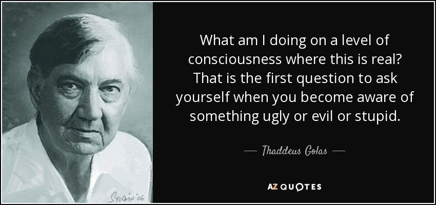 What am I doing on a level of consciousness where this is real? That is the first question to ask yourself when you become aware of something ugly or evil or stupid. - Thaddeus Golas