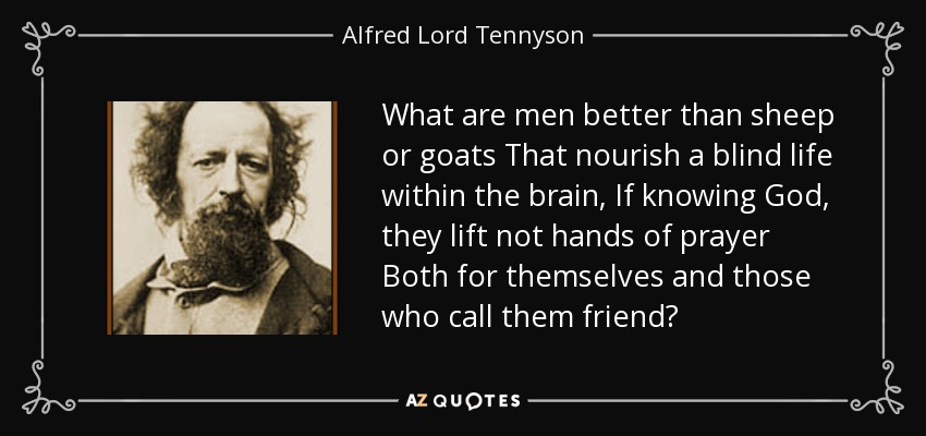 What are men better than sheep or goats That nourish a blind life within the brain, If knowing God, they lift not hands of prayer Both for themselves and those who call them friend? - Alfred Lord Tennyson