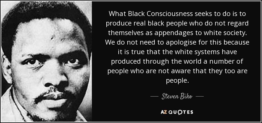 Image result for black consciousness