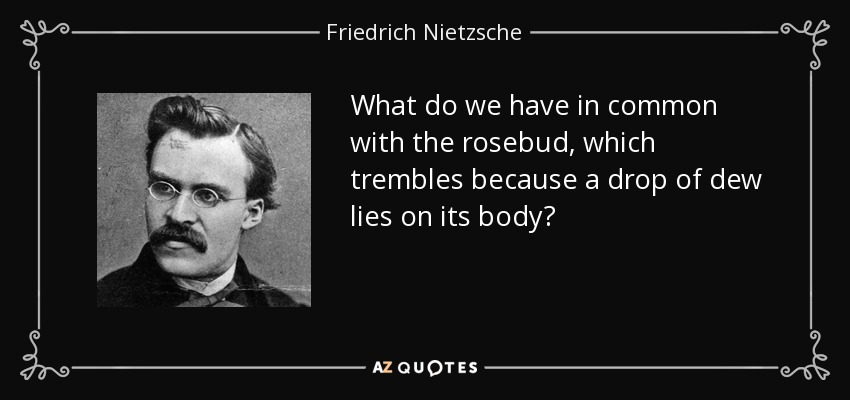 What do we have in common with the rosebud, which trembles because a drop of dew lies on its body? - Friedrich Nietzsche