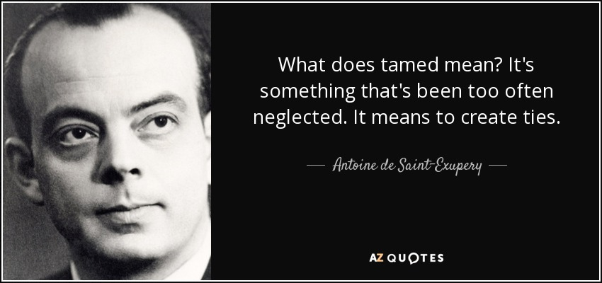 What does tamed mean? It's something that's been too often neglected. It means to create ties. - Antoine de Saint-Exupery