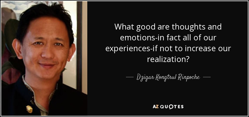 What good are thoughts and emotions-in fact all of our experiences-if not to increase our realization? - Dzigar Kongtrul Rinpoche