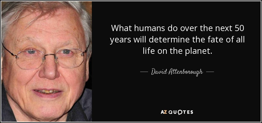 What humans do over the next 50 years will determine the fate of all life on the planet. - David Attenborough