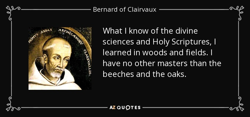 What I know of the divine sciences and Holy Scriptures, I learned in woods and fields. I have no other masters than the beeches and the oaks. - Bernard of Clairvaux