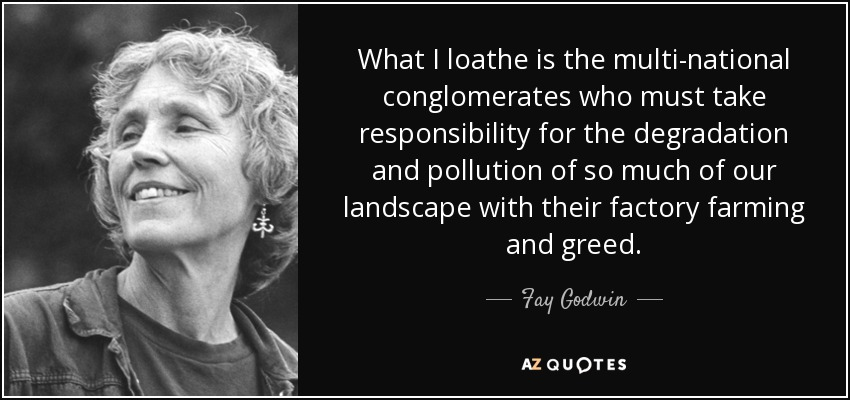 What I loathe is the multi-national conglomerates who must take responsibility for the degradation and pollution of so much of our landscape with their factory farming and greed. - Fay Godwin