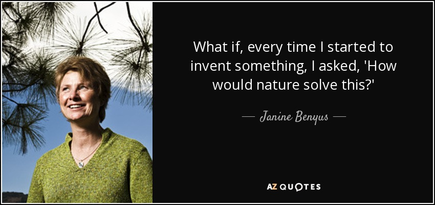 What if, every time I started to invent something, I asked, 'How would nature solve this?' - Janine Benyus