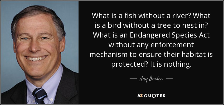 What is a fish without a river? What is a bird without a tree to nest in? What is an Endangered Species Act without any enforcement mechanism to ensure their habitat is protected? It is nothing. - Jay Inslee