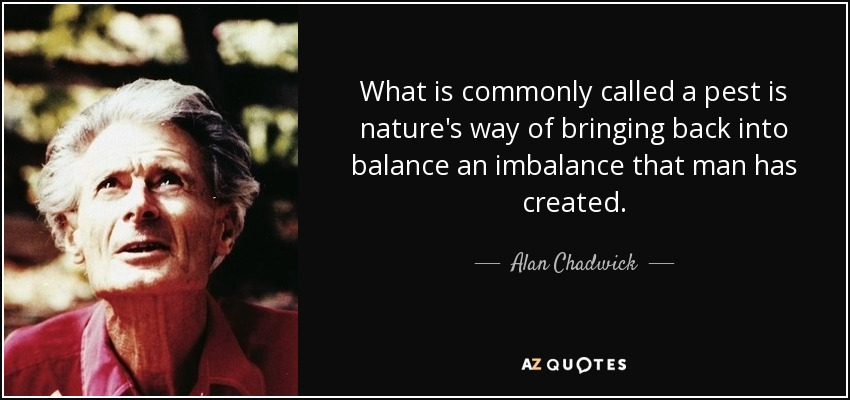 What is commonly called a pest is nature's way of bringing back into balance an imbalance that man has created. - Alan Chadwick