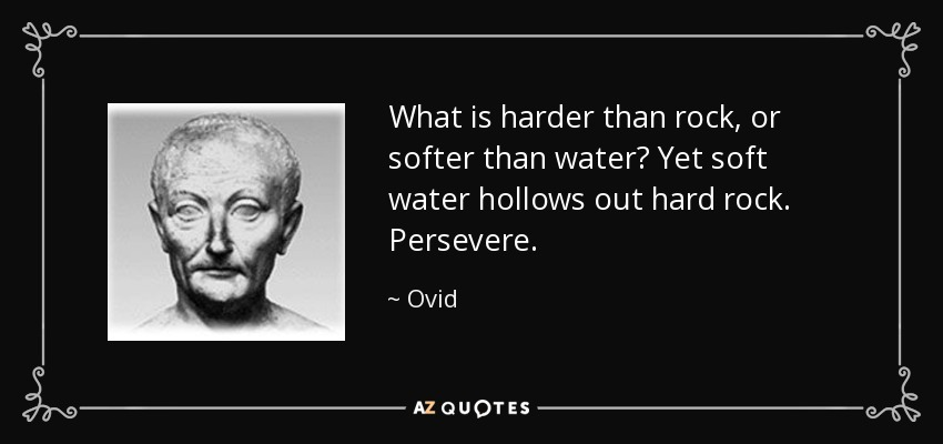 What is harder than rock, or softer than water? Yet soft water hollows out hard rock. Persevere. - Ovid