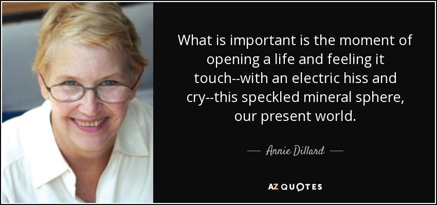 What is important is the moment of opening a life and feeling it touch--with an electric hiss and cry--this speckled mineral sphere, our present world. - Annie Dillard