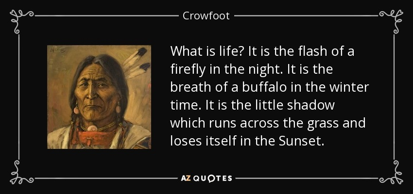 What is life? It is the flash of a firefly in the night. It is the breath of a buffalo in the winter time. It is the little shadow which runs across the grass and loses itself in the Sunset. - Crowfoot