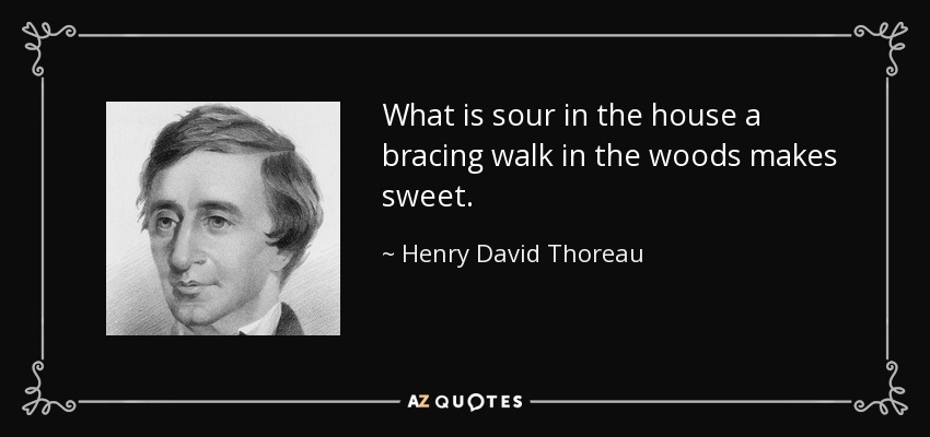 What is sour in the house a bracing walk in the woods makes sweet. - Henry David Thoreau