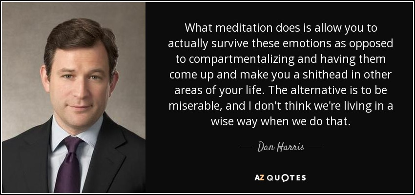 What meditation does is allow you to actually survive these emotions as opposed to compartmentalizing and having them come up and make you a shithead in other areas of your life. The alternative is to be miserable, and I don't think we're living in a wise way when we do that. - Dan Harris
