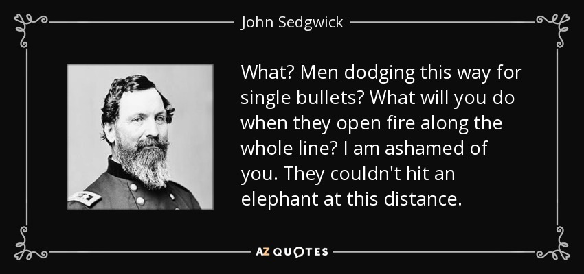 What? Men dodging this way for single bullets? What will you do when they open fire along the whole line? I am ashamed of you. They couldn't hit an elephant at this distance. - John Sedgwick