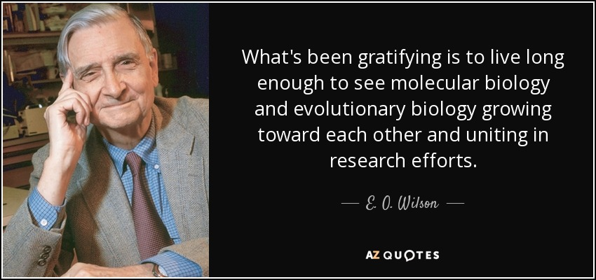 What's been gratifying is to live long enough to see molecular biology and evolutionary biology growing toward each other and uniting in research efforts. - E. O. Wilson