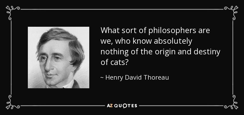 What sort of philosophers are we, who know absolutely nothing of the origin and destiny of cats? - Henry David Thoreau
