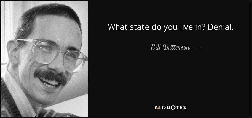 What state do you live in? Denial. - Bill Watterson