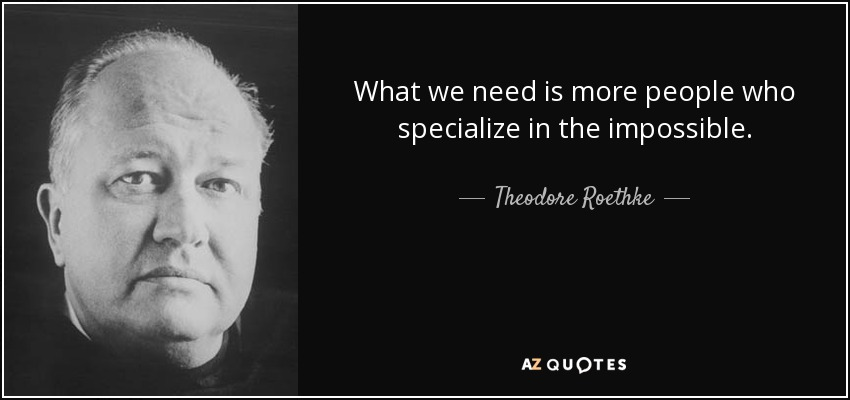 What we need is more people who specialize in the impossible. - Theodore Roethke
