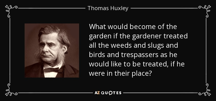What would become of the garden if the gardener treated all the weeds and slugs and birds and trespassers as he would like to be treated, if he were in their place? - Thomas Huxley