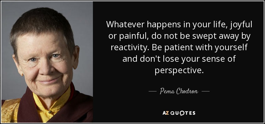 Whatever happens in your life, joyful or painful, do not be swept away by reactivity. Be patient with yourself and don't lose your sense of perspective. - Pema Chodron