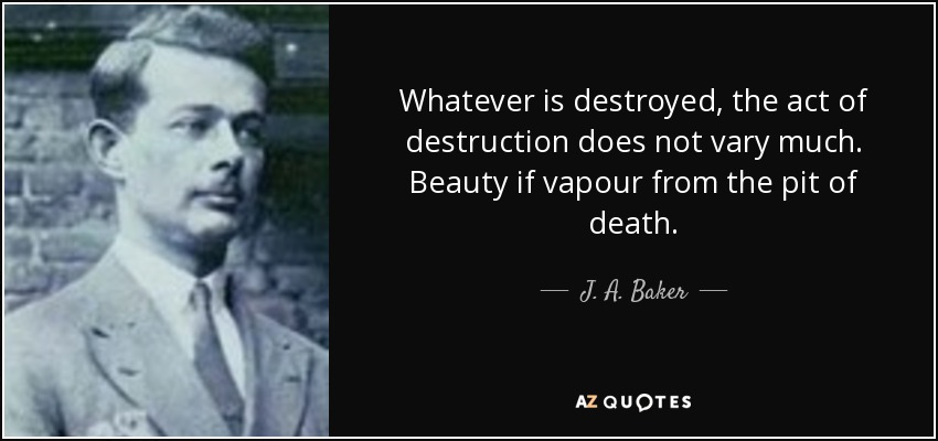 Whatever is destroyed, the act of destruction does not vary much. Beauty if vapour from the pit of death. - J. A. Baker