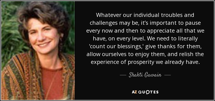 Whatever our individual troubles and challenges may be, it's important to pause every now and then to appreciate all that we have, on every level. We need to literally 'count our blessings,' give thanks for them, allow ourselves to enjoy them, and relish the experience of prosperity we already have. - Shakti Gawain