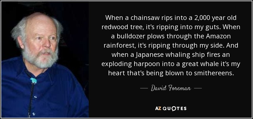 When a chainsaw rips into a 2,000 year old redwood tree, it's ripping into my guts. When a bulldozer plows through the Amazon rainforest, it's ripping through my side. And when a Japanese whaling ship fires an exploding harpoon into a great whale it's my heart that's being blown to smithereens. - David Foreman