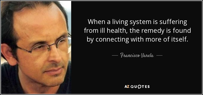 When a living system is suffering from ill health, the remedy is found by connecting with more of itself. - Francisco Varela